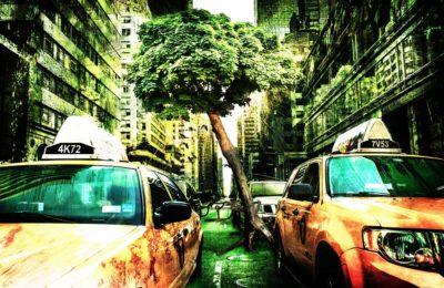 Ekologija: moj in tvoj planet